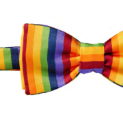 Gay Pride Bow Ties