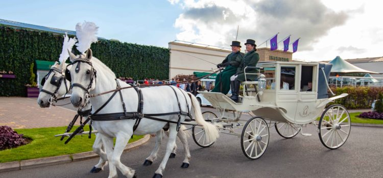 Fairytale Weddings with Horses